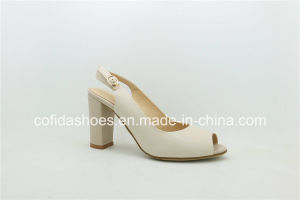 Popular Summer Chunky Heel Women Shoe with Peep Toe pictures & photos