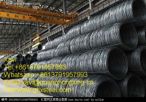 Q235, SAE1006/1006b, SAE10081008/B Hot Rolled Steel Wire Rod pictures & photos
