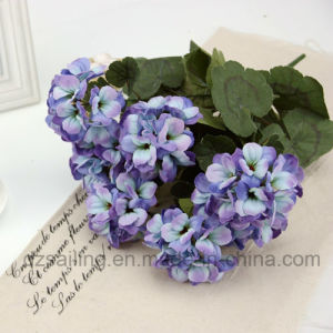 7 Heads Classic Begonia Bouquet Artificial Flower (DS00001) pictures & photos