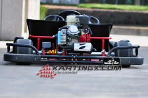 200cc/270cc Automatic Bugguy Gas Racing Go Kart with Double Seats pictures & photos