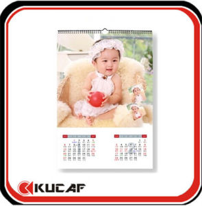 Monthly Printing Wall Calendar pictures & photos