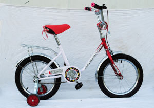 Lizhi Cyccle 20 with Carrier Popular Children Bike pictures & photos