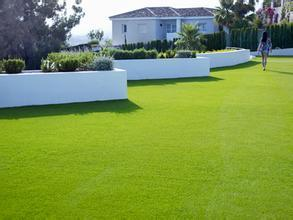 Good Natural Looking Synthetic Turf pictures & photos