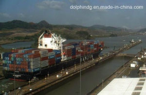 (Logistics) Freight Forwarder: LCL Ocean Shipping From China to Austria.