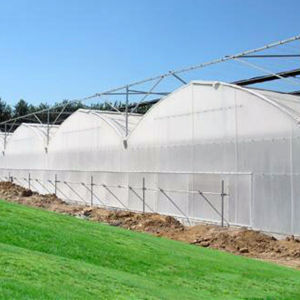 Vegetable Production Film Greenhouses China with High Quality pictures & photos
