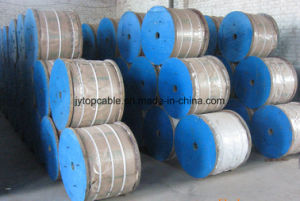Class C Galvanized Steel Wire Professional Manufacturer pictures & photos