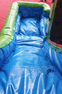 Inflatable Palm Tree Combo Wet N Dry Slide for Commercial Use (CHB706) pictures & photos