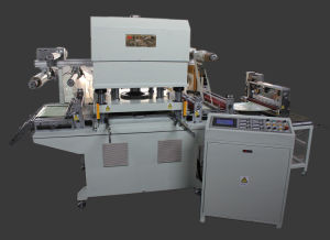 PTFE Membrane Die Cutting Machine pictures & photos