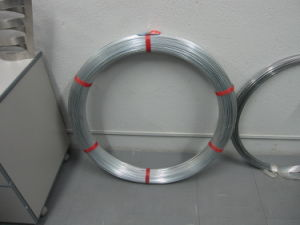 Hot Galvanized Steel Oval Wire pictures & photos