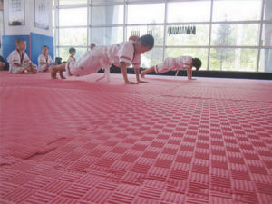 High Quality Kamiqi EVA Foam Floor Taekwondo Mats Wrestling Mats pictures & photos