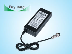 21V Ni-MH Battery Charger (FY2102000) pictures & photos