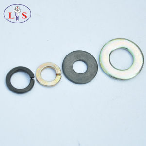 Spring Washer/Pressure Washer Zinc Plated pictures & photos