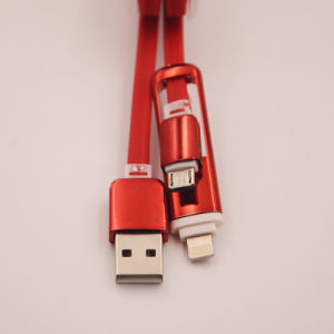 High Quality 2 in 1 Data USB Cable for Mobile Phone (XSSJ-007) pictures & photos