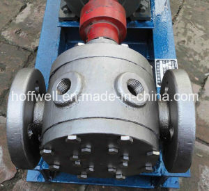 Hydrulic Pump YCB-G Heat Gear Oil Pump pictures & photos