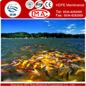 2.0mm HDPE Geomembrane, HDPE Pond Liner Used for Landfill pictures & photos