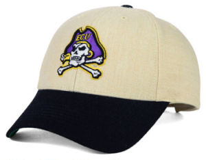 Purple Color Cotton Baseball Team Sports Hat with Embroidery Logo pictures & photos