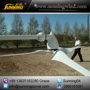 5000W Wind Turbine for Hybrid Power System