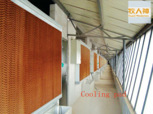 Cooling Pads in Poultry Farming House From Super Herdsman pictures & photos