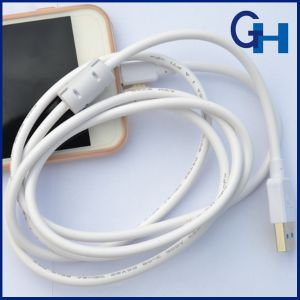 2016 1.5m Engineering Data Cable Support 5V-2A Output Fast Charging for iPhone and Galaxy pictures & photos