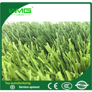 Artificial Turf/Soccer Field/7 Players Football /Soccer Field pictures & photos