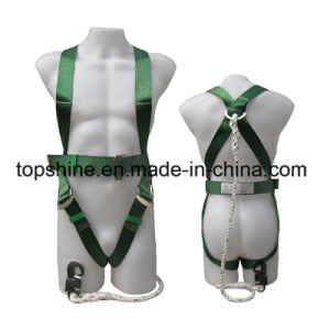 Standard Industrial Polyester Working Full-Body Adjustable Safety Harness Belt pictures & photos