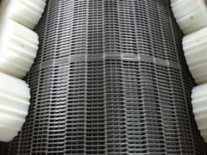 Plastic Gear of Conveyor Belt pictures & photos