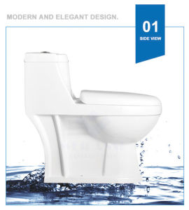 Weidansi Ceramic Wash Down S-Trap One Piece Toilet (WDS-T6117) pictures & photos