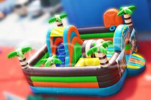 Forest Mini Inflatable Amusemet Park for Kids (CHOB331) pictures & photos
