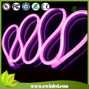 Exterior Wall Indoor 110V Landscape Lamps Neon Sign pictures & photos
