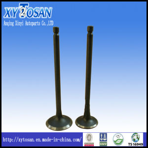 Engine Valve for VW Vr6/ Audi/ Polo/ Bora/ Passat (ALL MODELS) pictures & photos
