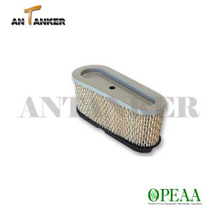 Motor Parts-Air Filter for B&S 282700 pictures & photos