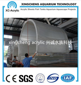 Transparent Acrylic Tunnel of Aquarium Project pictures & photos