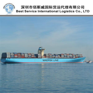 Sea Shipment Logistic Agent / Shipping Container / Freight Forwarder (FCL 20′′40′′) pictures & photos
