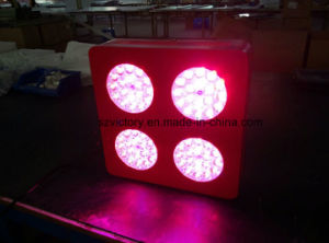 Modern Type 72 X 3W LED Grow Lighting Red: Blue: Yellow=7: 1: 1 for Medical Plants pictures & photos
