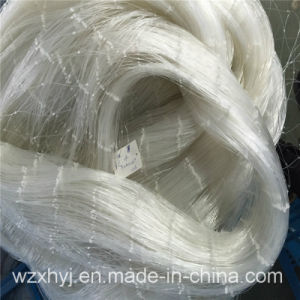 0.9mm X177.8mmst X70md Nylon Monofilament Fishing Net pictures & photos