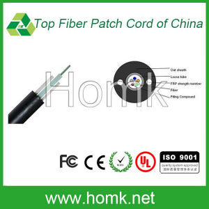Non-Metal Central Loose Tube Outdoor Fiber Cable (GYFXTY) pictures & photos