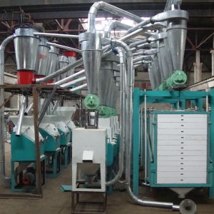 Flour Mill Machinery (6FTS-22 for wheat/maize/corn) pictures & photos