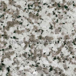 Polished Big White Flower Puning Granite Tiles for Flooring G439 pictures & photos