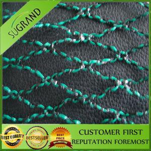High Quality UV Stabilizedanti Bird Netting pictures & photos