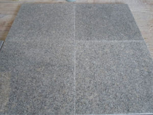 Cheap Chinese Granite G602 Polished Grey Granite on Promotion pictures & photos