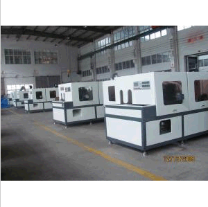Double Station High-Speed Extrusion Blow Molder (DHD-QK100) pictures & photos