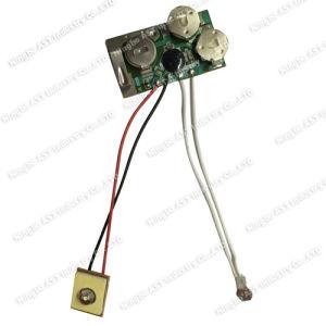 LED Flashing Module, LED Flashing Light, Flashing Light pictures & photos