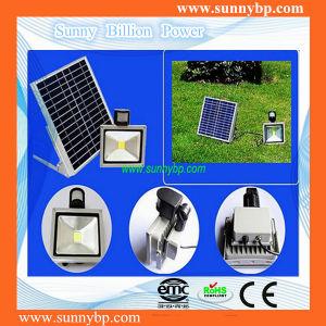 12V-24V 20W Solar LED Flood Light with IEC62560 pictures & photos