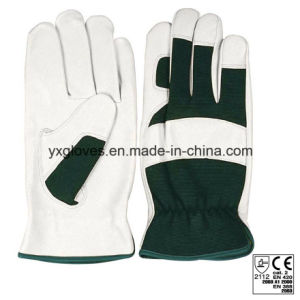 Leather Glove-Industrial Glove-Working Glove-Safety Glove-Labor Glove-Work Glove pictures & photos