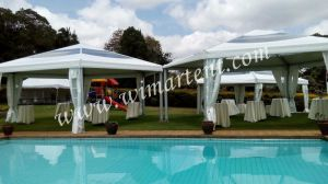 100 People Outdoor Hexagonal Pagoda Tent for Private Garden Party in Kenya pictures & photos