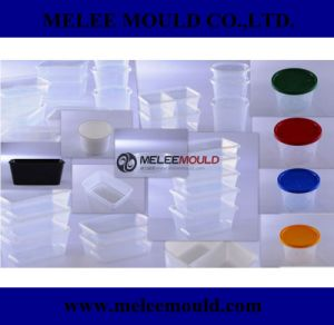 PP Food Container Mould Manufacturer pictures & photos
