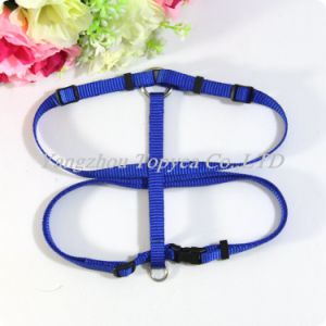 Nylon Pet Harness Puppy Dog Harness Dog Lead Pet Lead pictures & photos