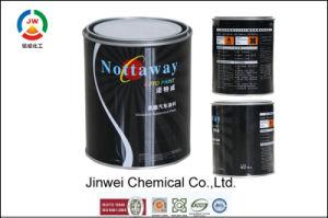 Non-Toxic Acrylic Auto Bottom Paint Colorful Lacquer Car Paint pictures & photos