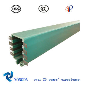 Multi Poles Safety Insulated Conductor Rail System for Crane Hoist (DHG Series)