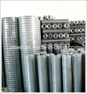 Galvanized Welded Steel Wire Netting